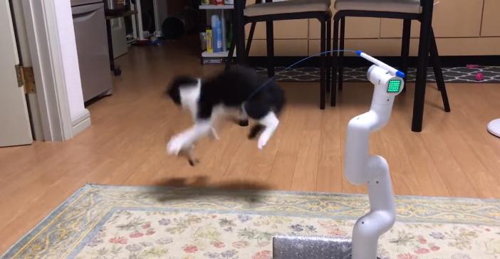 世紀の大発明「自動猫じゃらしロボ」が爆誕 自在な動きに愛猫も躍動