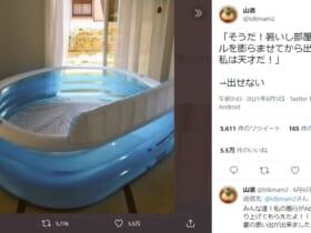 「私は天才だ」家庭用プールを室内で膨らませたら……思わぬ落とし穴