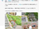画像:国土交通省 高知河川国道事務所Twitter(@mlit_kochi)のスクリーンショットです