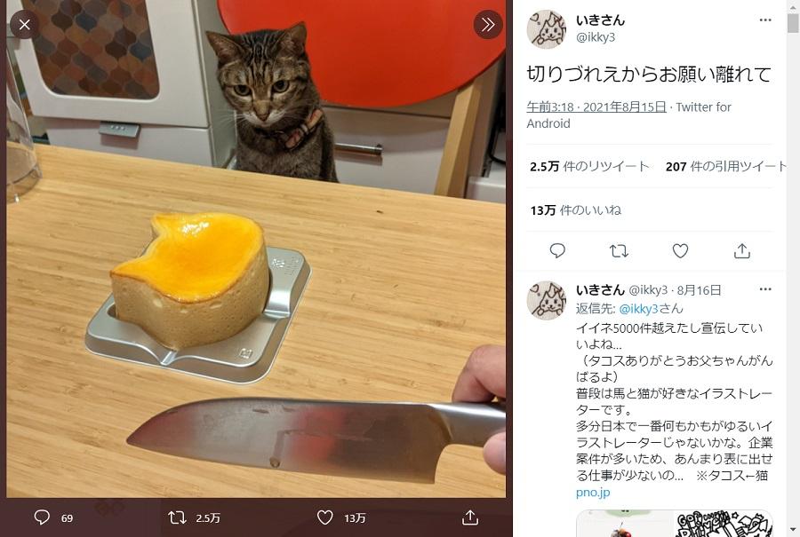 猫型ケーキをじっと見つめるタコスちゃん