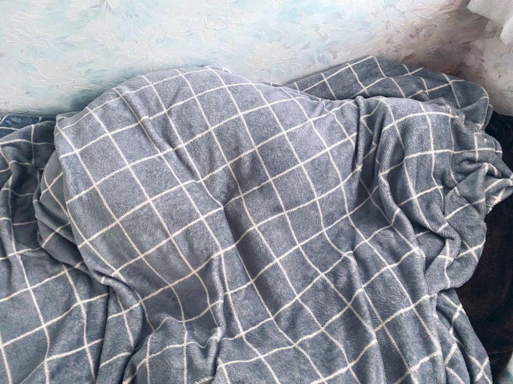寒いのが苦手なアギトちゃん。かけふとんにくるまって寒さをしのぎます。