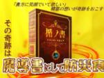 本棚に飾って備える 魔導書風 防災セット 『楯ノ書』