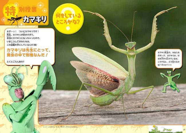 昆虫の「生き抜く」すごさ、種として「命をつなぐ」すごさに迫った内容