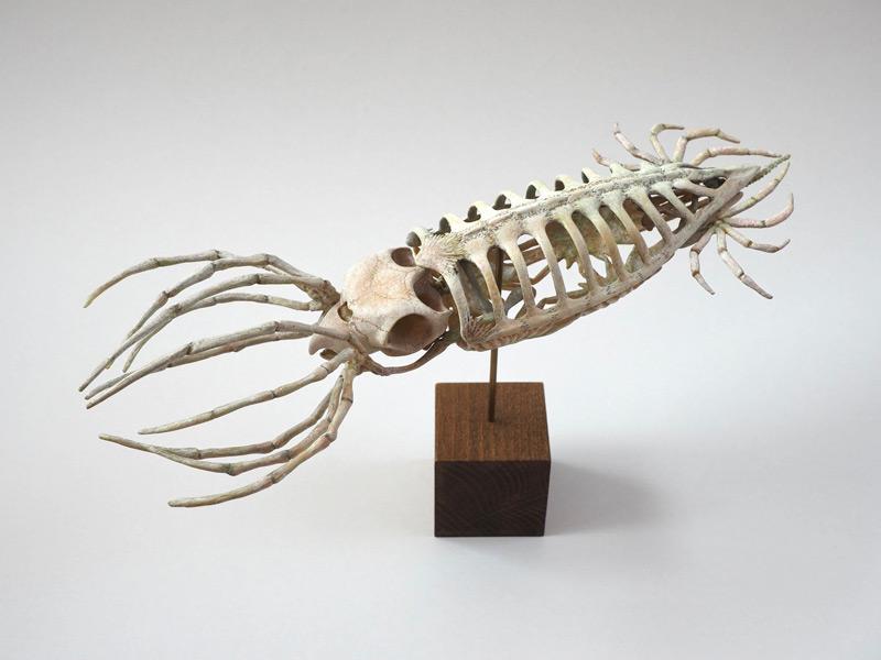 古代の巨大ウミガメから外套膜の骨格を発想(増永元さん提供)