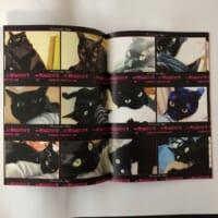 「私が猫に噛まれている写真集」面白アイデア作品に…